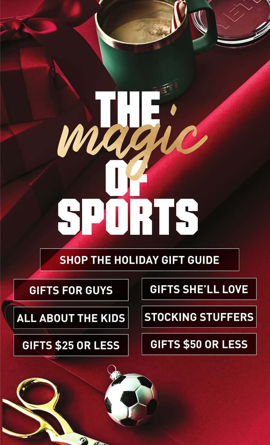Dick's Sporting Goods Cyber Monday 2020 Page 2
